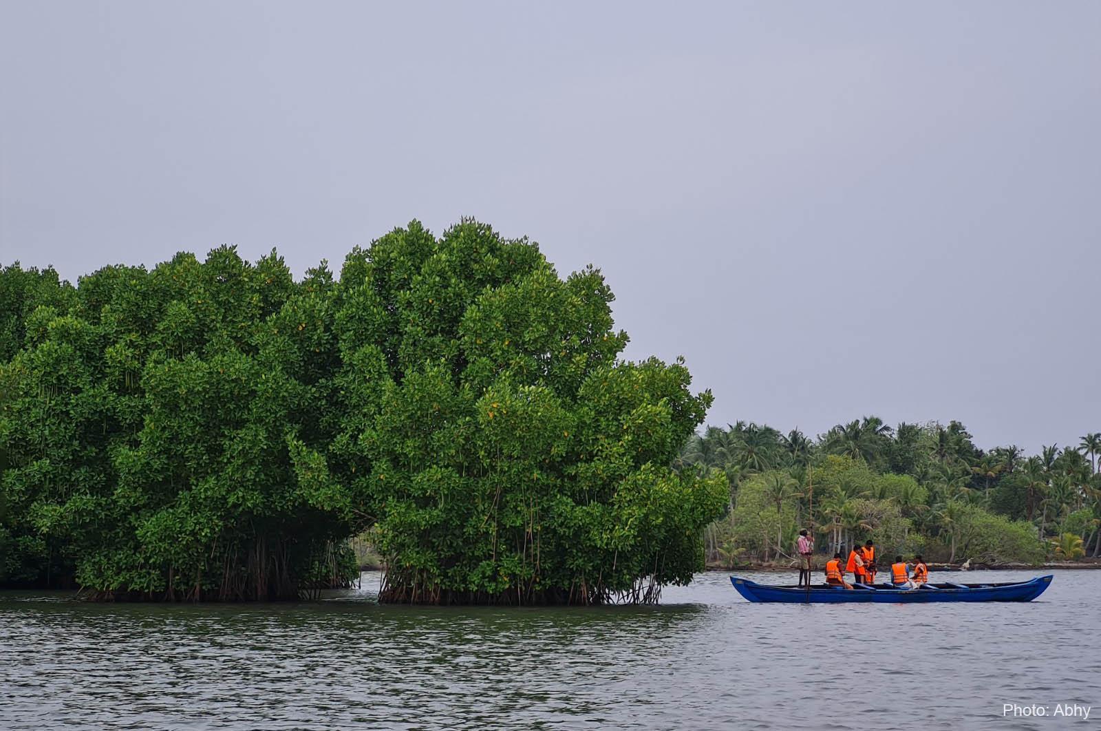 Travel: Skip Alappuzha, Go Munroe Island to Unwind